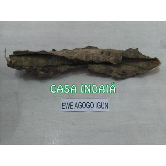 Ewe Agogo Igun