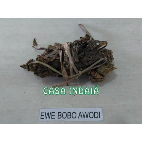 Ewe Bobo Awodi