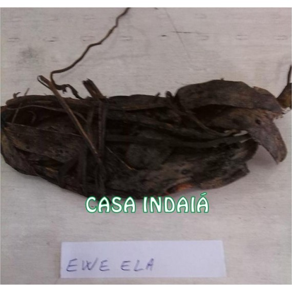 Ewe Ela
