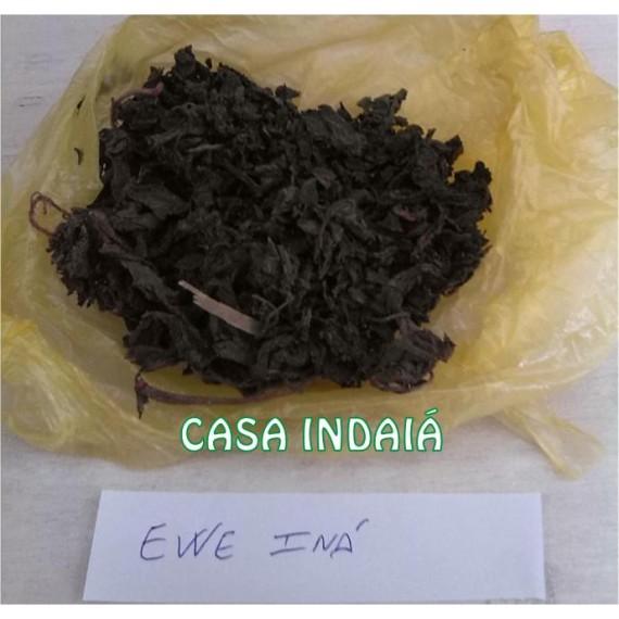 Ewe Ina