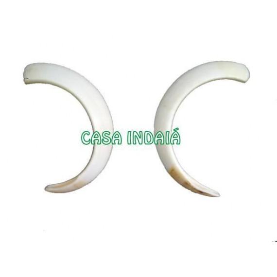 Dente de Javali Grande (Presas)